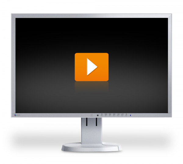 EIZO FlexScan EV2316W - 23 Zoll Full HD TFT Flachbildschirm Monitor - interne Lautsprecher - grau