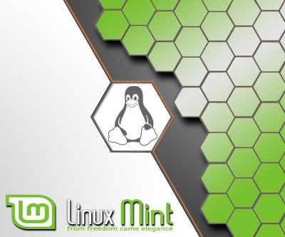 USB-Live Stick: Linux Mint Cinnamon 64Bit 8 GB USB 3.0
