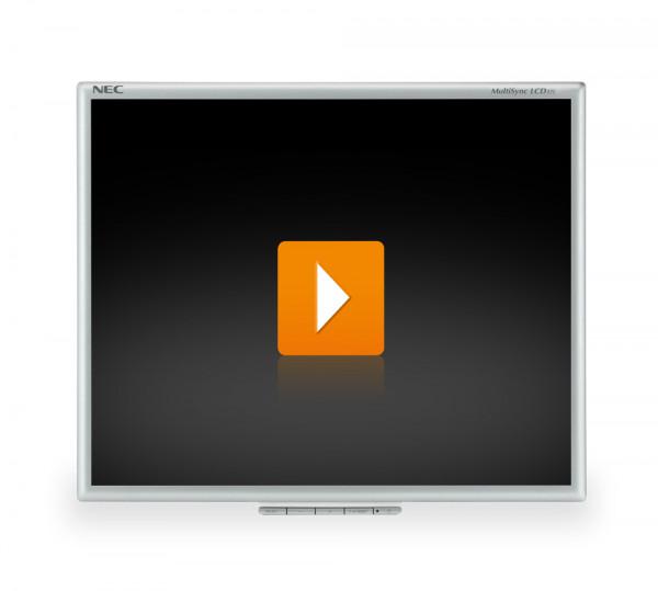 NEC LCD175m - 17 Zoll TFT Flachbildschirm Monitor - interne Lautsprecher - Silber/Schwarz - ohne Fuß