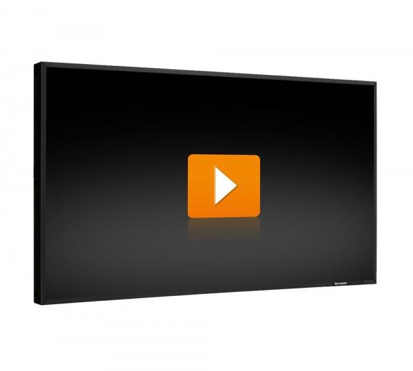 Sharp PN-E471R - 47 Zoll Full HD TFT Flachbildschirm Monitor - schwarz