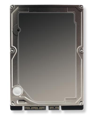 Interne 40 GB HDD Markenfestplatte 2,5 Zoll - Nach Lagerbestand
