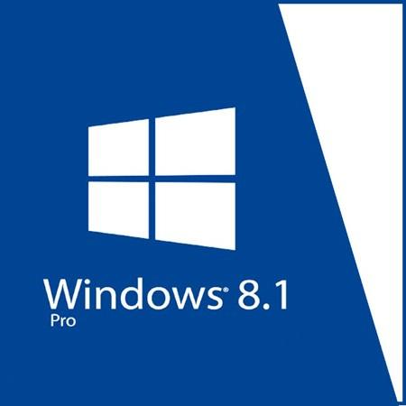 Windows 8.1 Pro 32 Bit - Systembuilder