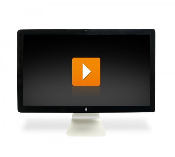 Apple Monitor A1316 27 Zoll 2560x1440 Pixel WQHD Display USB 2.0 - interne Lautsprecher - WebCam