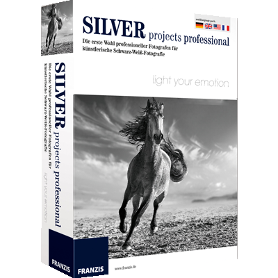SILVER projects professional - ESD